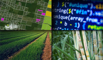 GIS Precision Agriculture