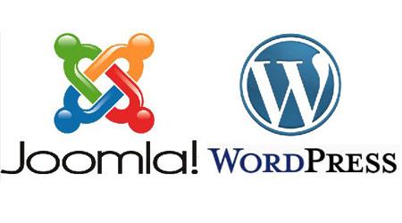 build cms websites